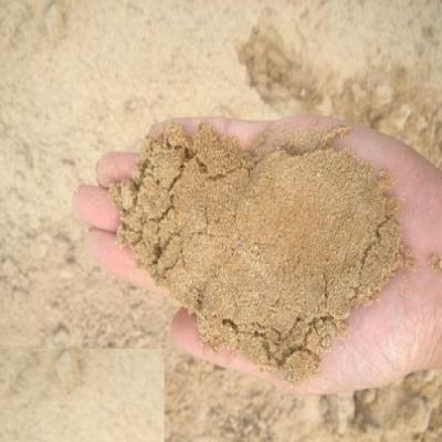 HP ทราย